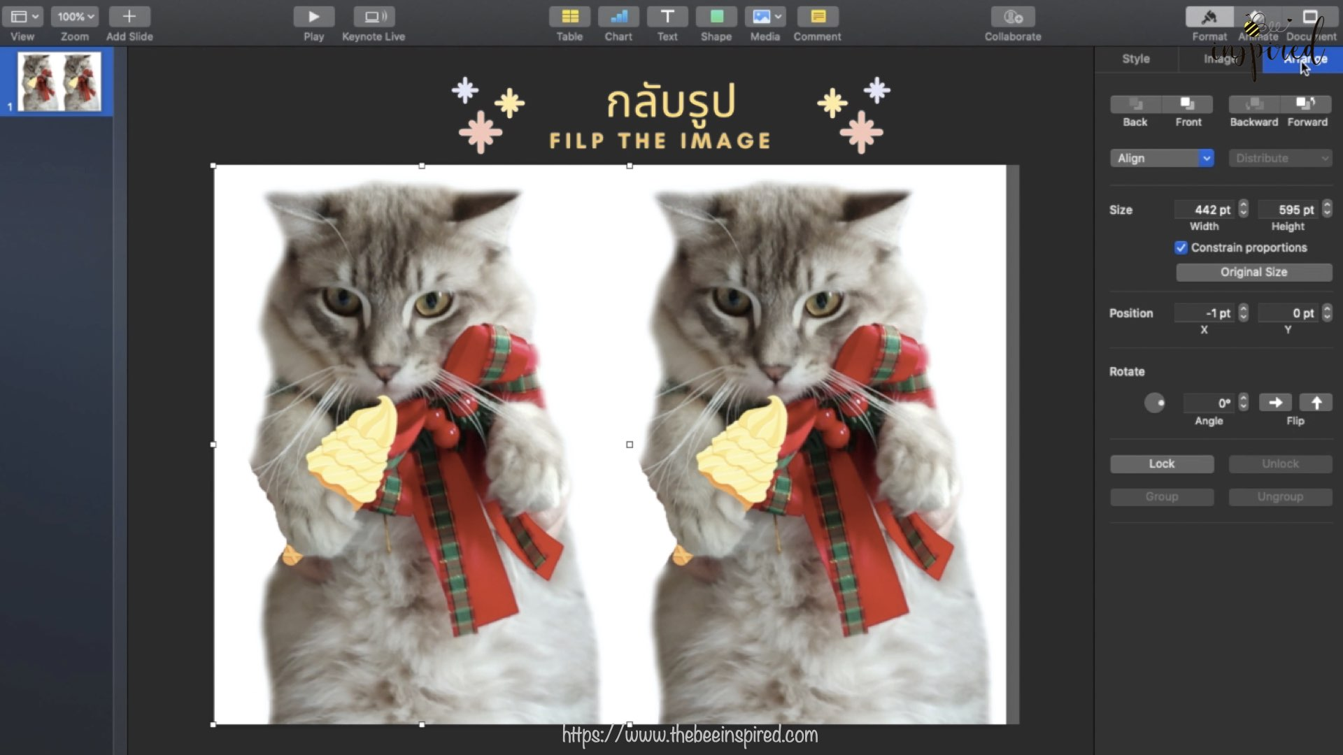 Cat Pillow-Website Pics.001-1