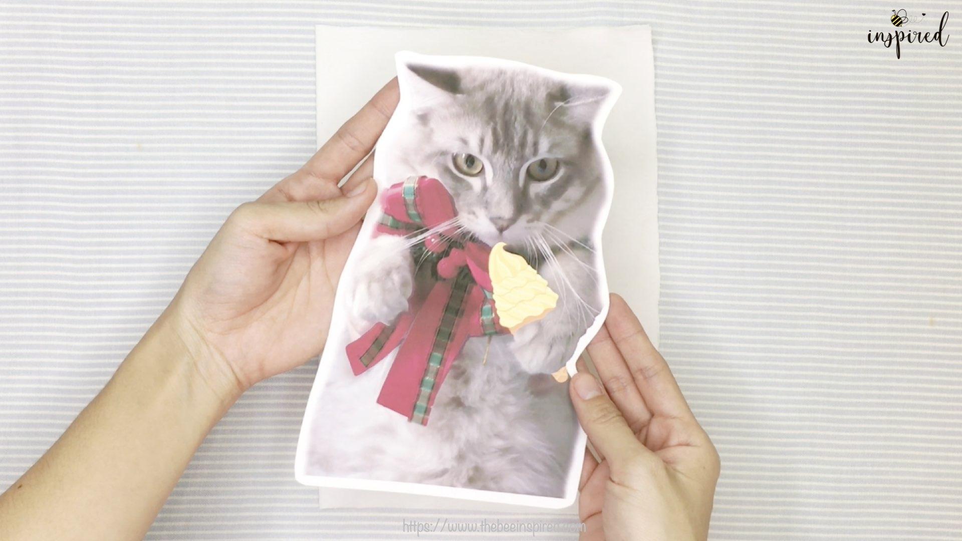 Cat Pillow-Website Pics.004-2