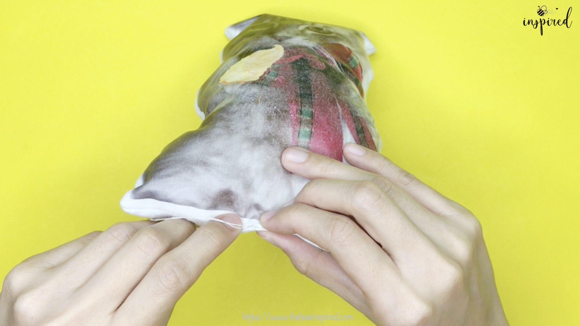 Cat Pillow-Website Pics.014-1
