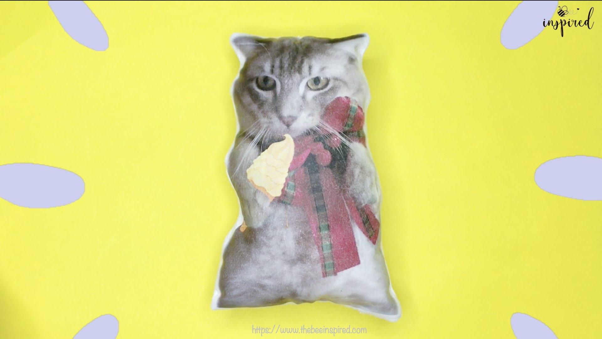 Cat Pillow-Website Pics.015-1