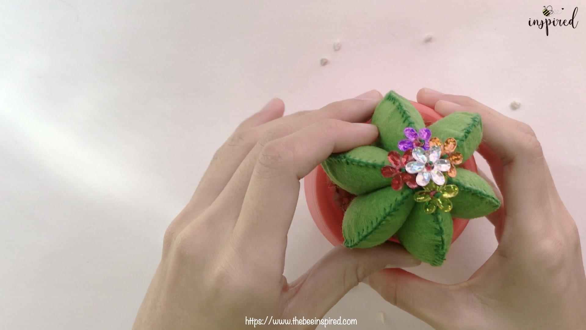 Felt Cactus-Website Pics.010-1